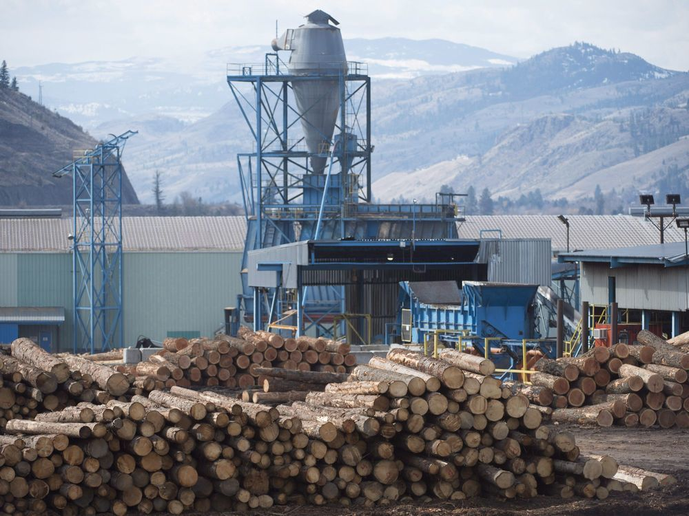 OPINION: Why isn't the province doing more to help forestry sector?