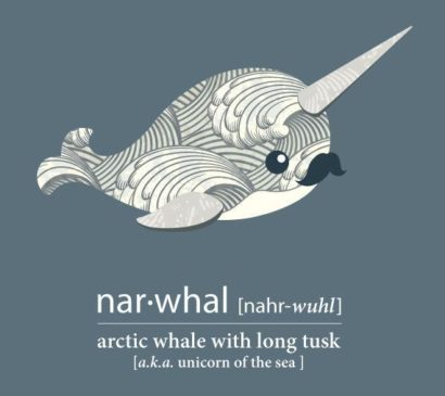 The Importance of Raising Narwhals