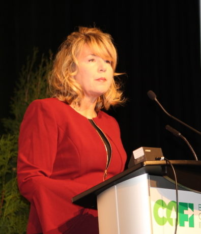 Wood Business: 'Bumps ahead': speakers at COFI 2019 present mixed forecast for forestry sector