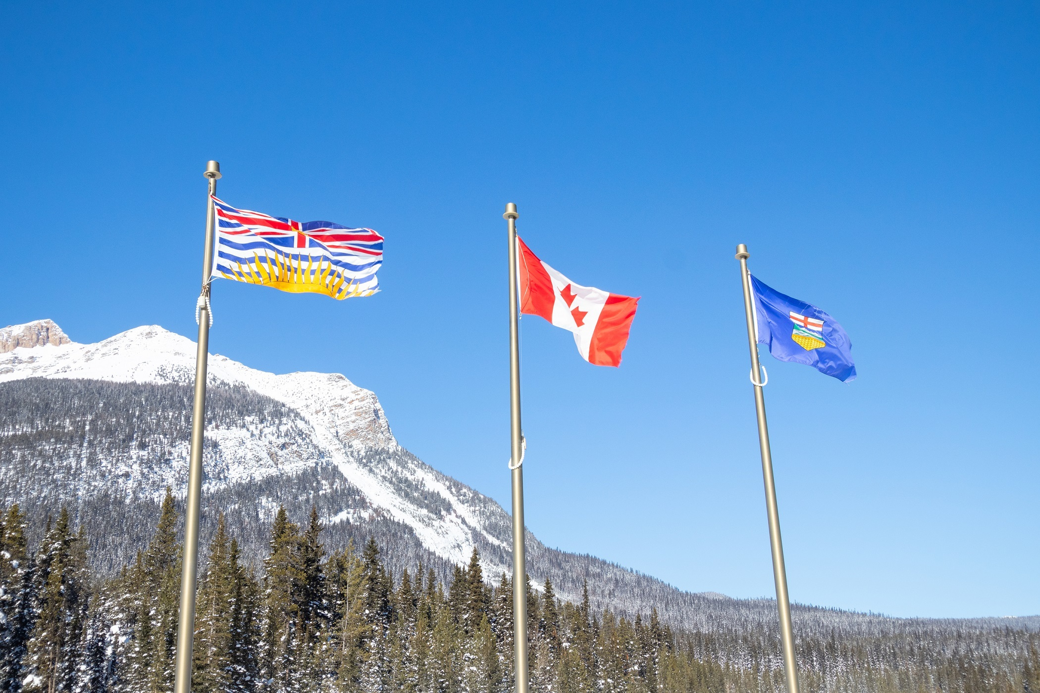 VIDEO: B.C.- Alberta Traded Goods & Services